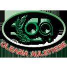 Olearia Aulettese Logo